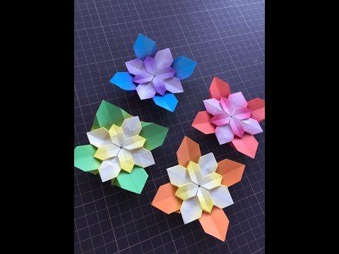 Hydrangea(AJISAI) part2 紫陽花(あじさい)その2 - YouTube