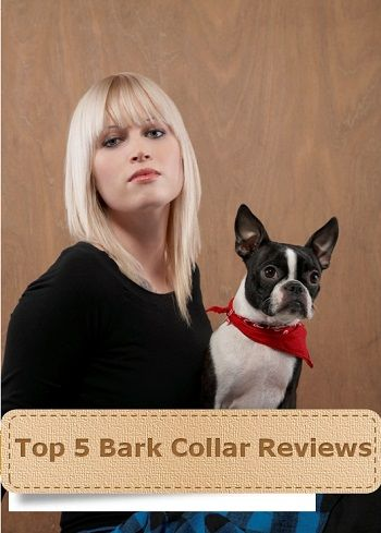 Best Bark Collar Reviews – Ultimate Buying Guide to Buying Bark Collars Welcome to my blog. If you are interested in buying a bark collar, then you have landed at the right place. Read the following best bark collar reviews and I am sure that you will be able to select the best one.