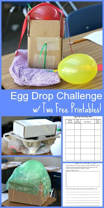 Egg Drop Challenge 2015- Fun STEM activity for kids of all ages! Includes two FREE printable recording sheets! ~ BuggyandBuddy.com