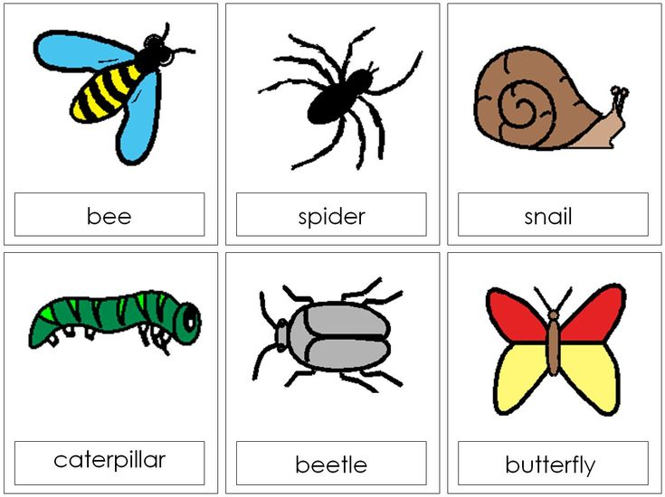 Symbols Teaching Resources And Colour On Pinterest