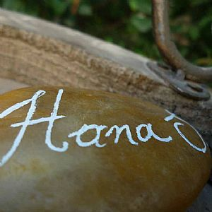 Handwritten beach pebbles always make a stunning wedding place name and keepsake for all your guests.