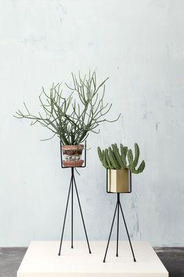 Support Plant Stand Small / Pour pot de fleurs - H 50 cm H 50 cm / Noir - Ferm Living