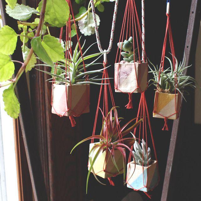 mini hanging planters #colorblockPlants Hangers, Minis Dog Qu, Hanging Plants, Minis Hanging, Ships, Hanging Succulents, Hanging Planters, Hanging Pots, Hanging Gardens