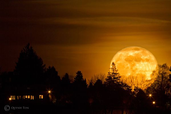 50 Mind blowing Pictures of the Moon