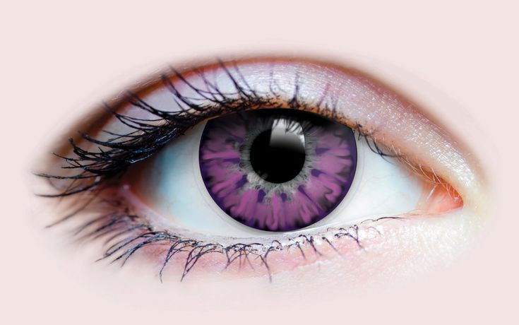 Enchanted Lilac – Primal Contact Lenses