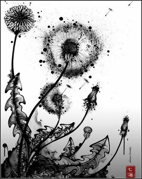 Черно-белые картины Nanami Cowdroy