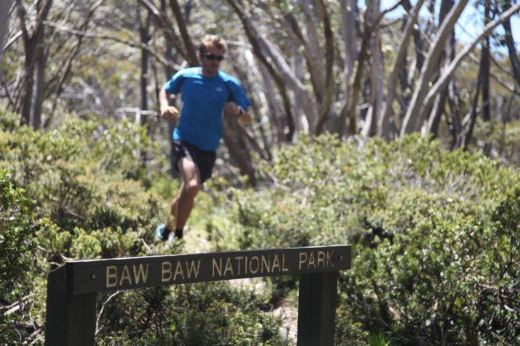 Trail running at Mt Baw Baw Alpine Resort into the National Park