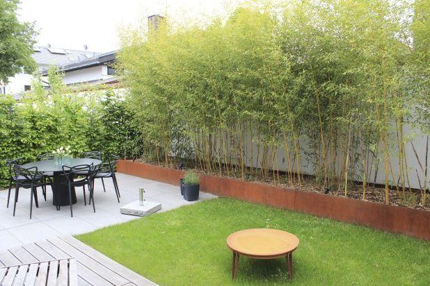 Bambus im Hochbeet