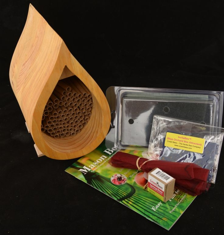 Mason Bees Are Non Aggressive Bee The Better At Pollinating Then Honey By