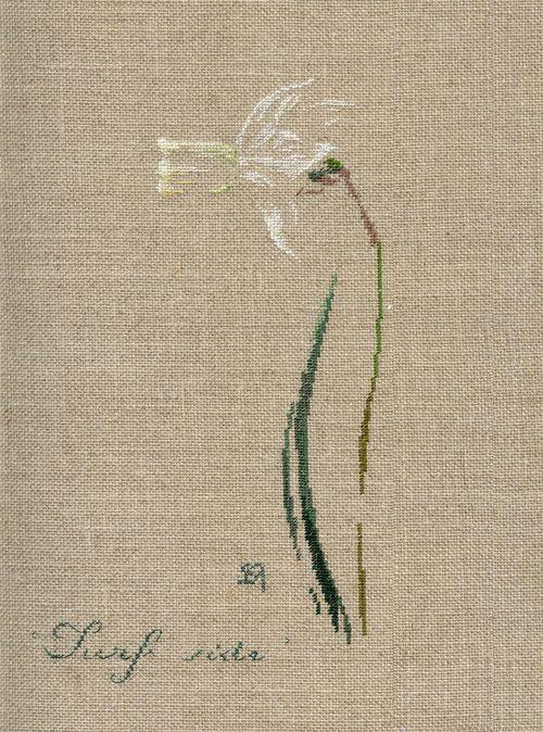 Par brodeuse Marie-Thérèse Saint-Aubin (embroidery works by Marie-Thérèse Saint-Aubin)   http://www.archive-host2.com/membres/images/1336321151/fleurs/narcisses/Surf_side/surf_side.jpg