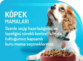 Aradığım tüm köpek mamaları petsinlife.com'da. Teşekkürler. #köpekmaması #köpek
