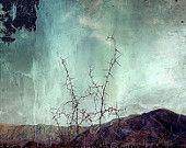 Thorn rood oranje gebergte diepblauwe hemel mint teal leeftijd weg reis reizen fine art fotografische afdrukken home decor