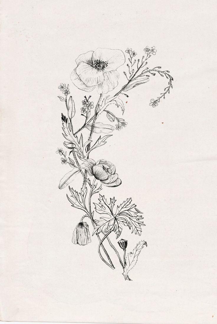 букет полевых цветов тату: 15 тыс изображений найдено в Яндекс.Картинках