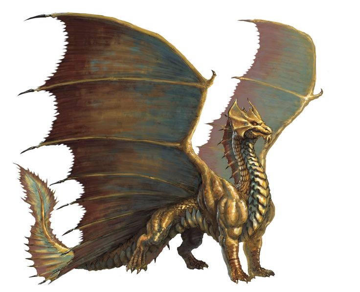 Azure's gold dragons are shaped more like the Brass dragon (from the D&D fifth edition Monster Manual).