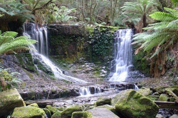 Tasmanian Waterfalls - Horseshoe Falls