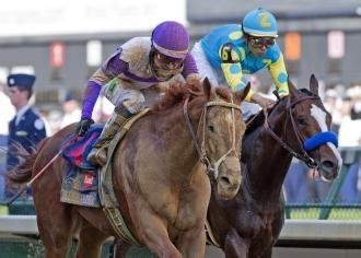Best 25+ Racing form ideas on Pinterest | Triple crown horse ...