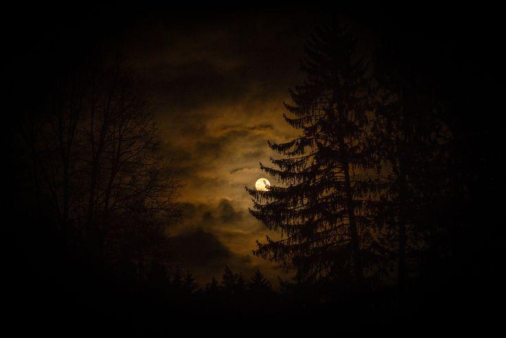 Moonlight by Luboš Dufek on 500px