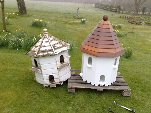 how to build a dovecote