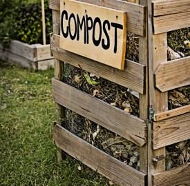 20 Blogs Homeowners Should Read Before Composting
