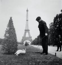 Vintage Paris with a bunny!!