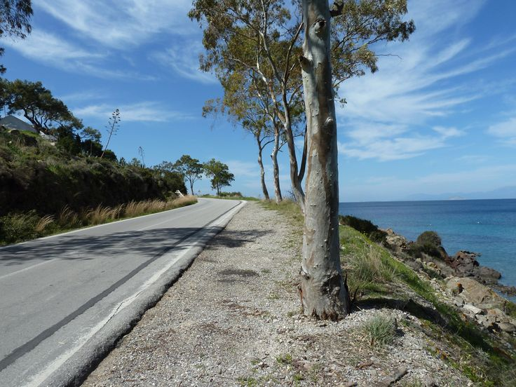 Cycling in Aegina island | A Greek Adventure
