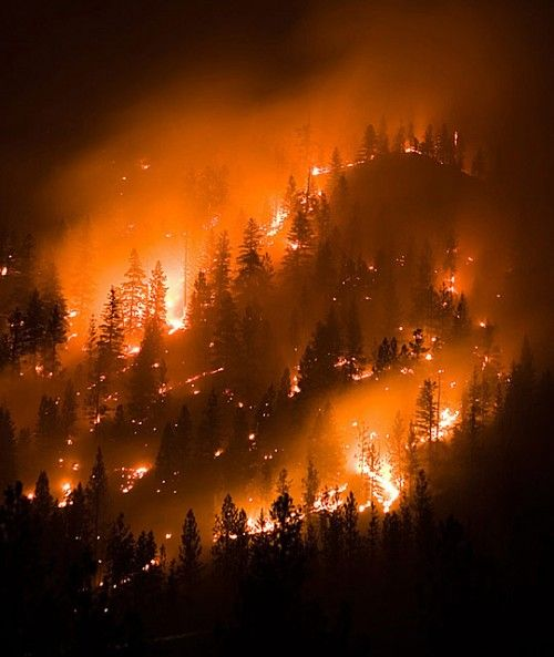 30 Heart-Wrenching #NaturalDisasters Photographs. Campo, Colorado fire.