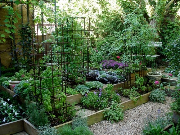 I want our front yard to feel like a jungle of edible for Pretty raised beds