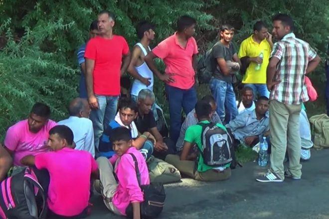 Véleményed a migránsokról – felmérés