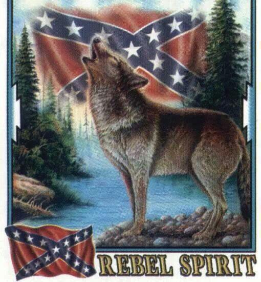 Rebel Spirit Wolves Pinterest Texas Hill Country