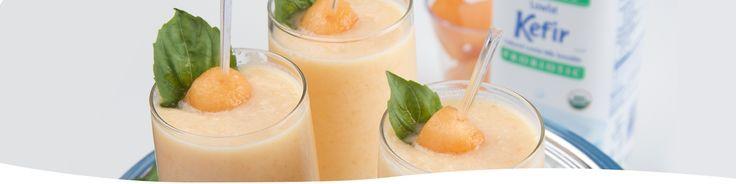 Cantaloupe Pineapple Kefir Smoothie – http://lifewaykefir.com/recipes/cantaloupe-pineapple-kefir-smoothie/