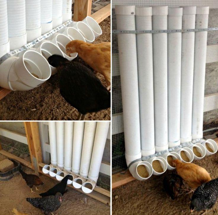 DIY PVC chicken feeder  #diy #home #pets