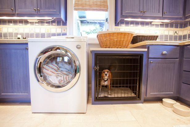 Laundry room and dog crate if you must have a dog crate