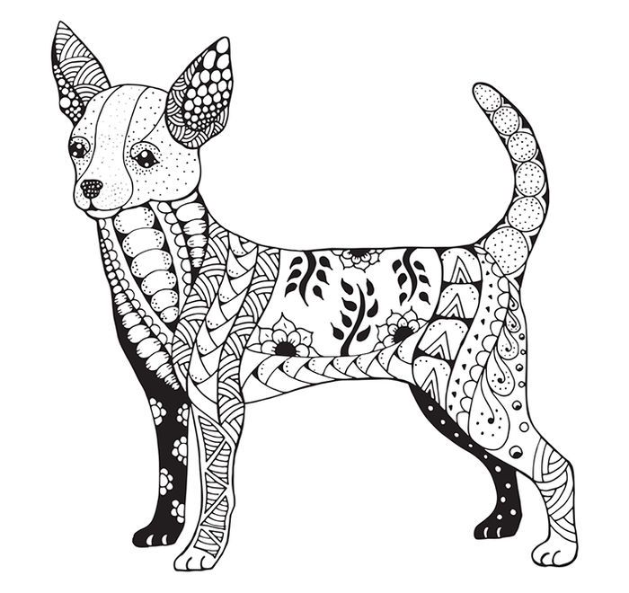 Coloring Pages Of Chihuahua In 2020 Dog Coloring Page Chihuahua Drawing Animal Coloring Pages