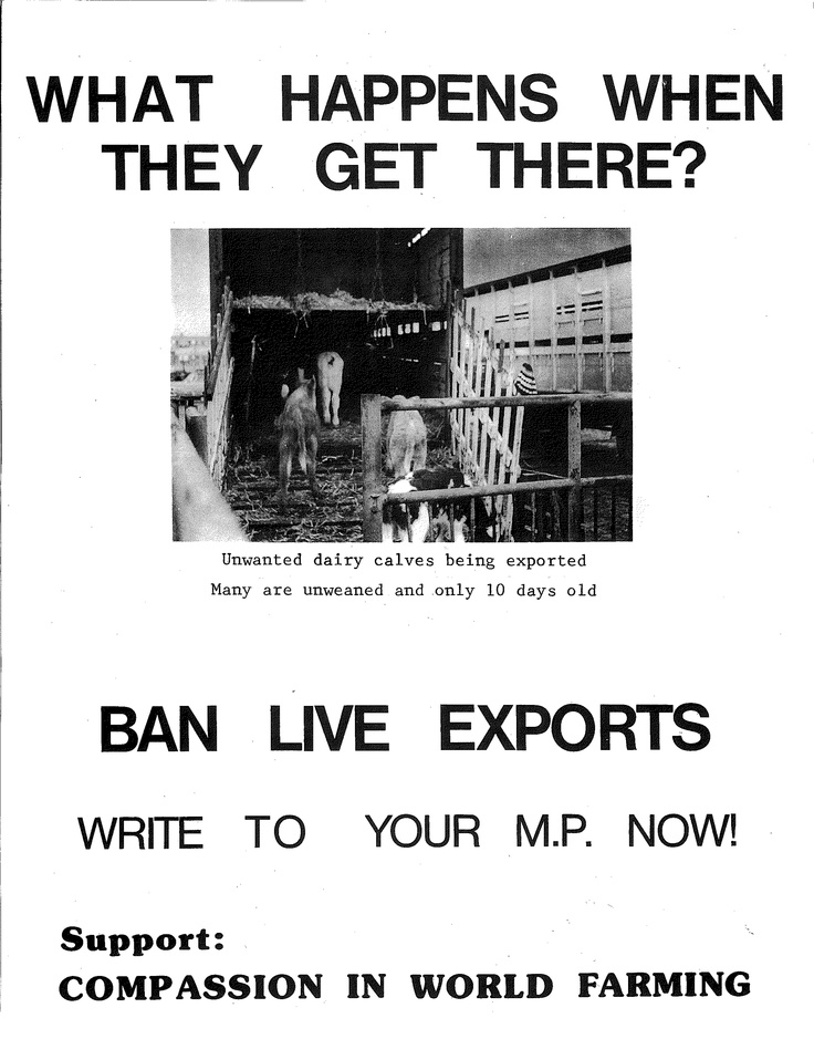 A hard hitting poster produced shortly after our foundation in 1967.