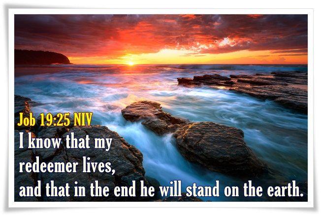 Job 19:25