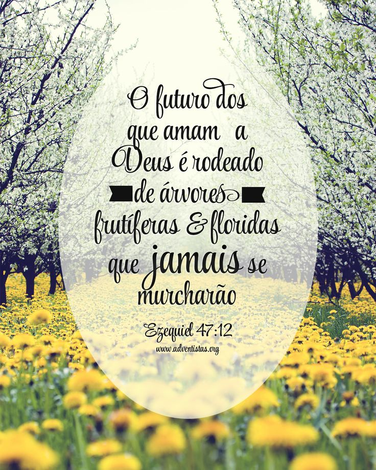Famosos 190 best frases adoráveis images on Pinterest | Words, Funny  ZK99
