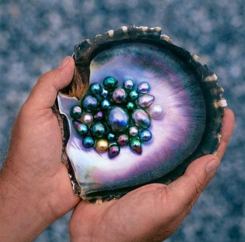 Black Tahitian Pearls / Mineral Friends <3