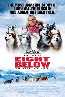 Eight Below: One of the best movies showing friendship , loyalty and bonding between man and dogs. Set in the Antarctic. Must watch if you like dogs or animals.