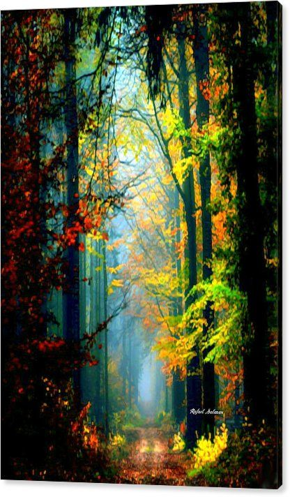 Limited Time Promotion: Autumn Trails In Georgia Stretched Canvas Print