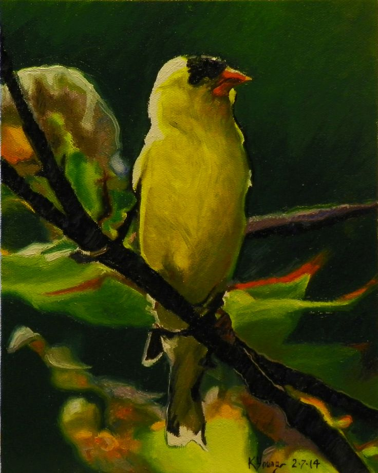 Goldfinch oil painting by Kenneth Young www.kenyoungfineart.com