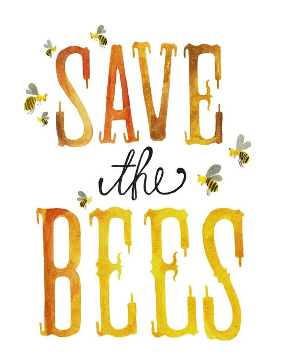 Now 8x10  Save the Bees Print by poppyandpinecone on Etsy