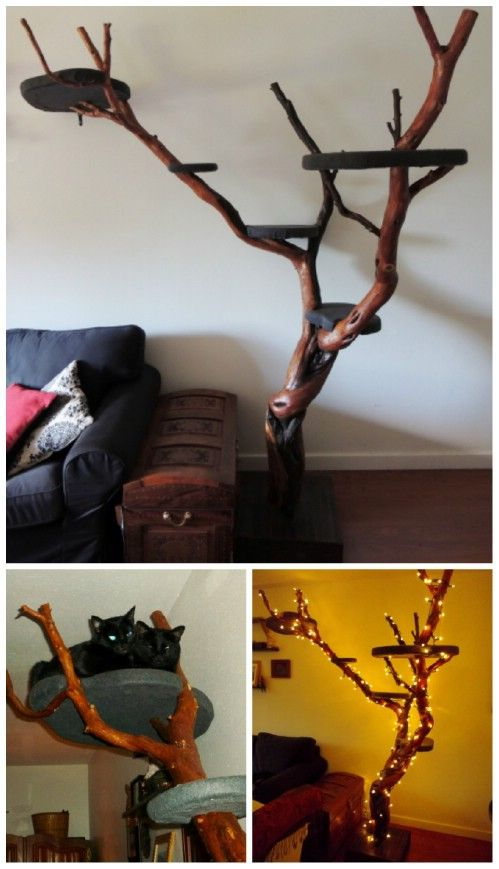 So cool - cat fun plus art. This tree is probably beyond my skill level but there are other neat (and cheap) cat toy/stuff ideas in this article.
