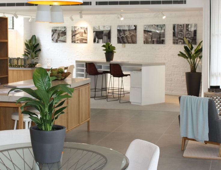 Display suite plants