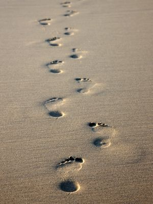 when you ask why there are only one set of foot prints.. ..you are not alone God is the sand beneath your feet ,the air you breath ,the ocean that washes over you..you are not alone you are always filled with love..it is these moments when you can truly feel it ...