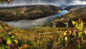 Обои Португалия Пейзаж Реки Поля Valenca Do Douro Природа