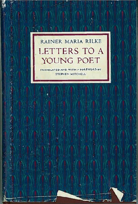 letters to a young poet reflection The young poet shows the  submit poetry and letters to the editors of poetry magazine submit stay in the know: subscribe to poetry foundation newsletters.