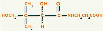 Ácido pantoténico o  vitamina B5. Descripción, fórmula química, función y características. Fuentes del ácido pantoténico. http://www.plantas-medicinal-farmacognosia.com/temas/vitaminas/acido-pantotenico/