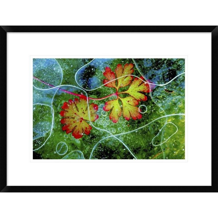 Global Gallery, Andres Miguel Dominguez 'Thaw' Framed Giclee Print