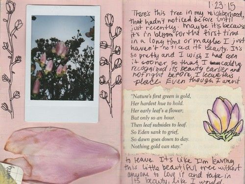 Imagem de pink, flowers, and journal