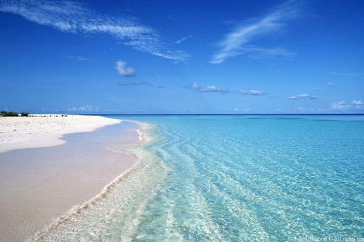 Aux portes de l'Alentejo, Comporta rappelle le Saint-Tropez originel (comprendre sans le bling-bling les VIP) entre désert et Atlantique. Pour couper avec votre quotidien et vous imprégner d'un Portugal entre ciel et mer, sautez le pas et détournez-vous de Lisbonne le temps d'un week-end. Vous pourrez vous ressourcer à Comporta aux côtés d'une jet-set plutôt sobre, sur des maisons de plages ouvertes et en buvant des cafés les pieds dans le sable.